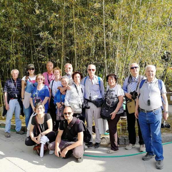 Consulenza turistica in Giappone - Foto 3